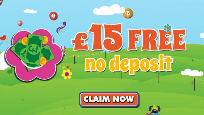Play at Hippy Bingo and Get up to 500% Deposit Bonuses