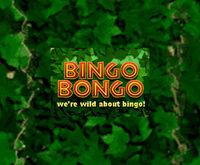 Bingo Bongo Logo
