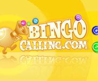 Bingo Calling Logo