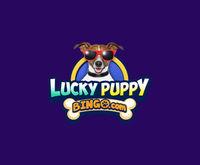 Lucky Puppy Bingo Logo