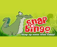 Snap Bingo Logo