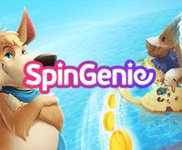 Spin Genie Bingo Logo