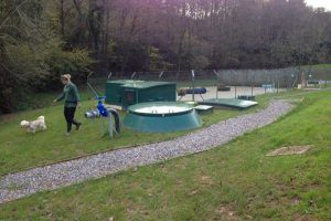 ilfracombe-dogs-trust-centre-installation-of-a-wpl-rads-desludge-sewage-treatment-plant