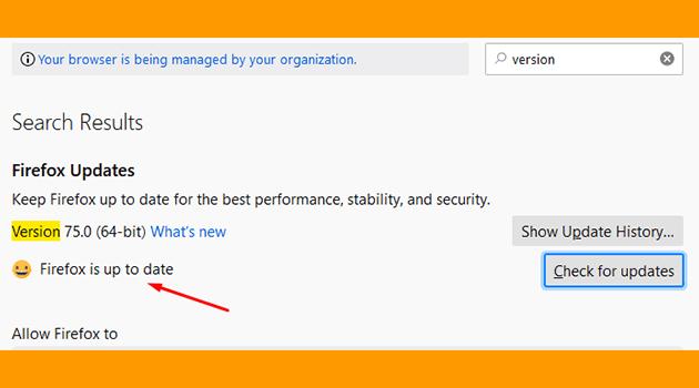 cara memasang idm di firefox update