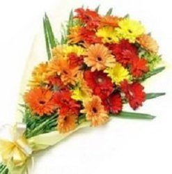 Flowers Delivery in Kanpur, Online Flowers Delivery in Kanpur