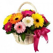 30 Gerberas Flowers Basket