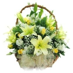 Designer Basket of 6 Yellow Lilies and 20 mix white yellow roses