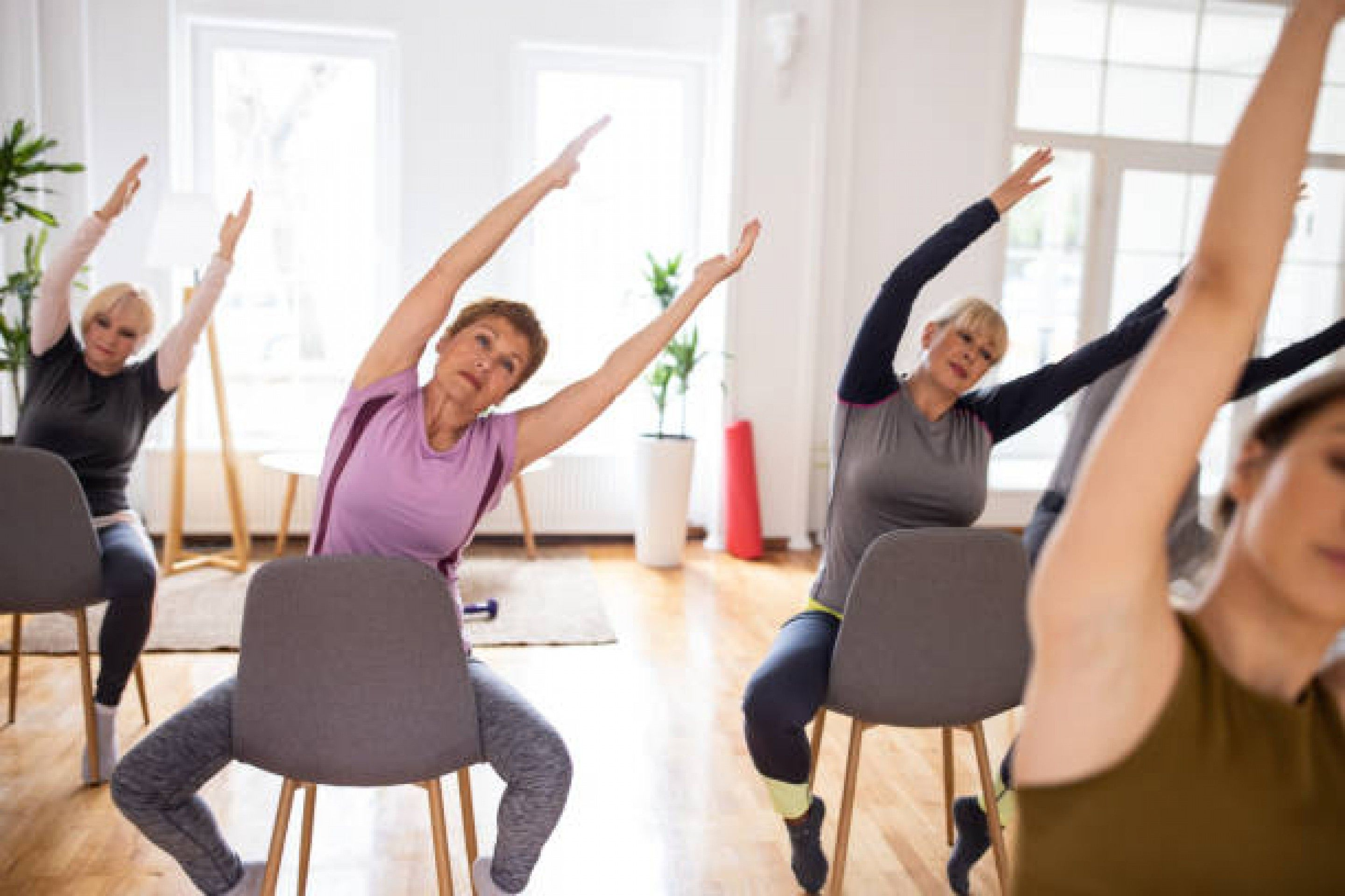 Build Your Seat: Teaching Chair Yoga with Stacy Warrington