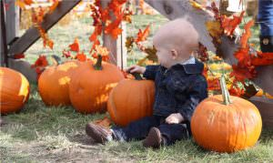 The Eye Health Perks From Pumpkin! Cute Boy Sits in pumpkin patch!