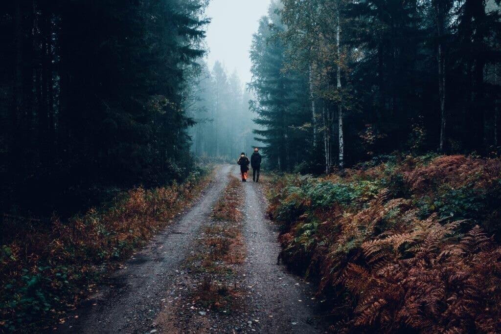 Zwei Jäger auf einem Waldweg