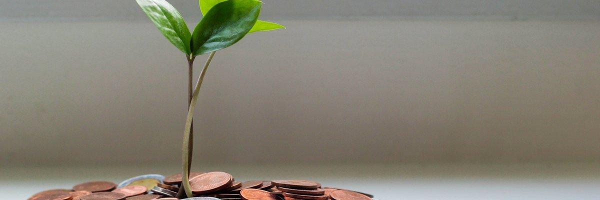Echte Zahlen: green|portal jetzt 8 Wochen produktiv bei STAWAG