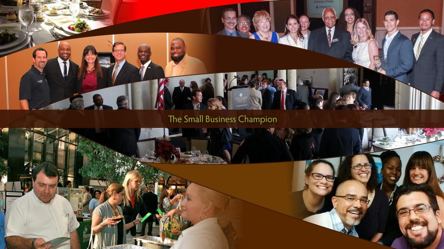 Il campione delle piccole imprese