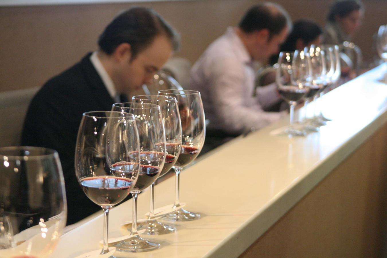 Cours de vin dans le programme Culinarium