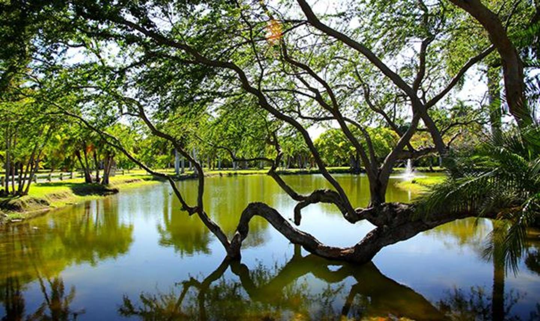 Crandon Park Lake and Fountain