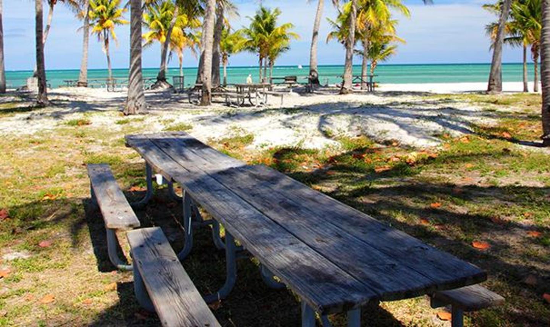 Crandon Park Tables de pique-nique avec Beach Vue