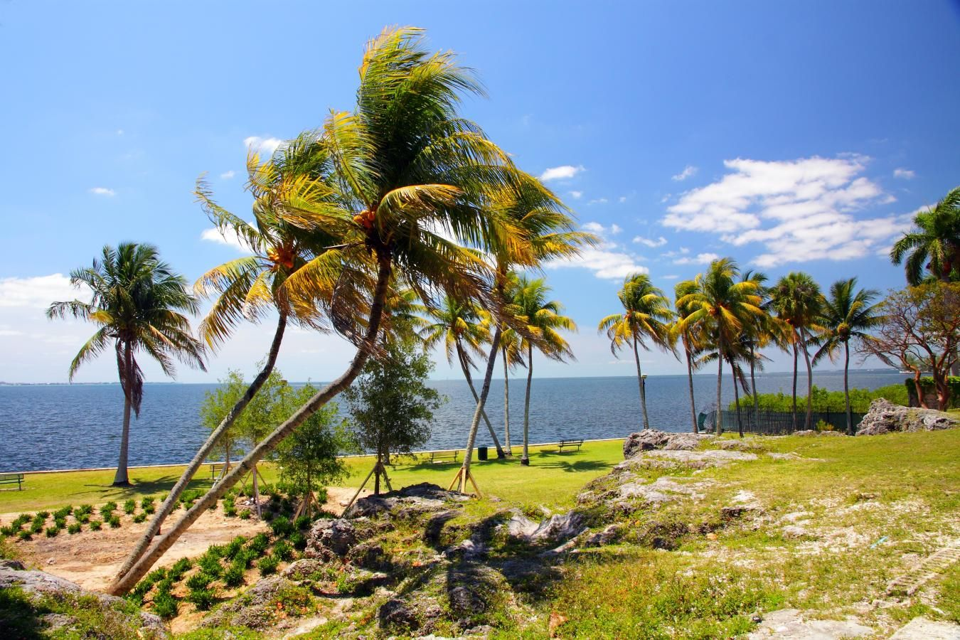 A view of Biscayne Bay at Alice C. Wainwright Park