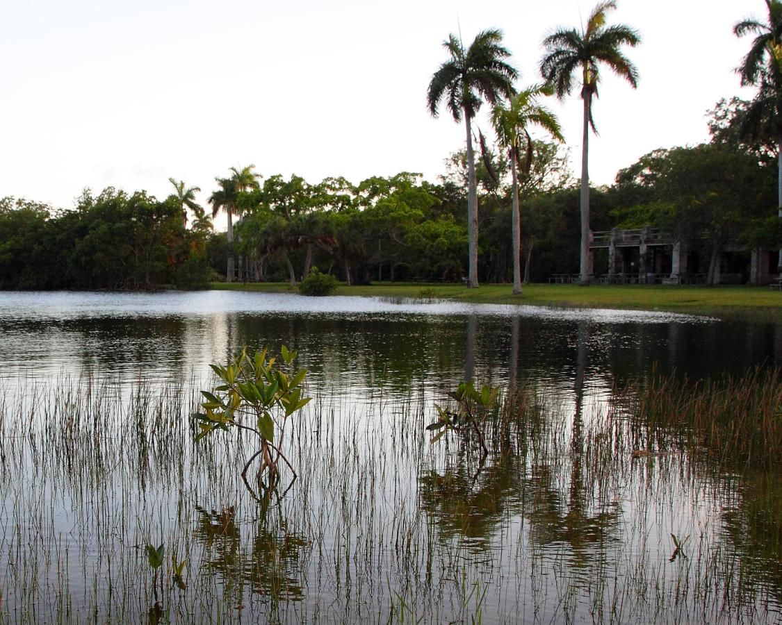Matheson Hammock Park Lake