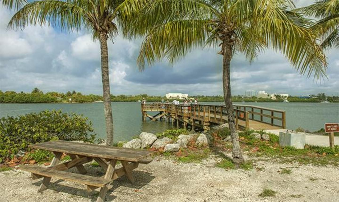 Picnic area and pier
