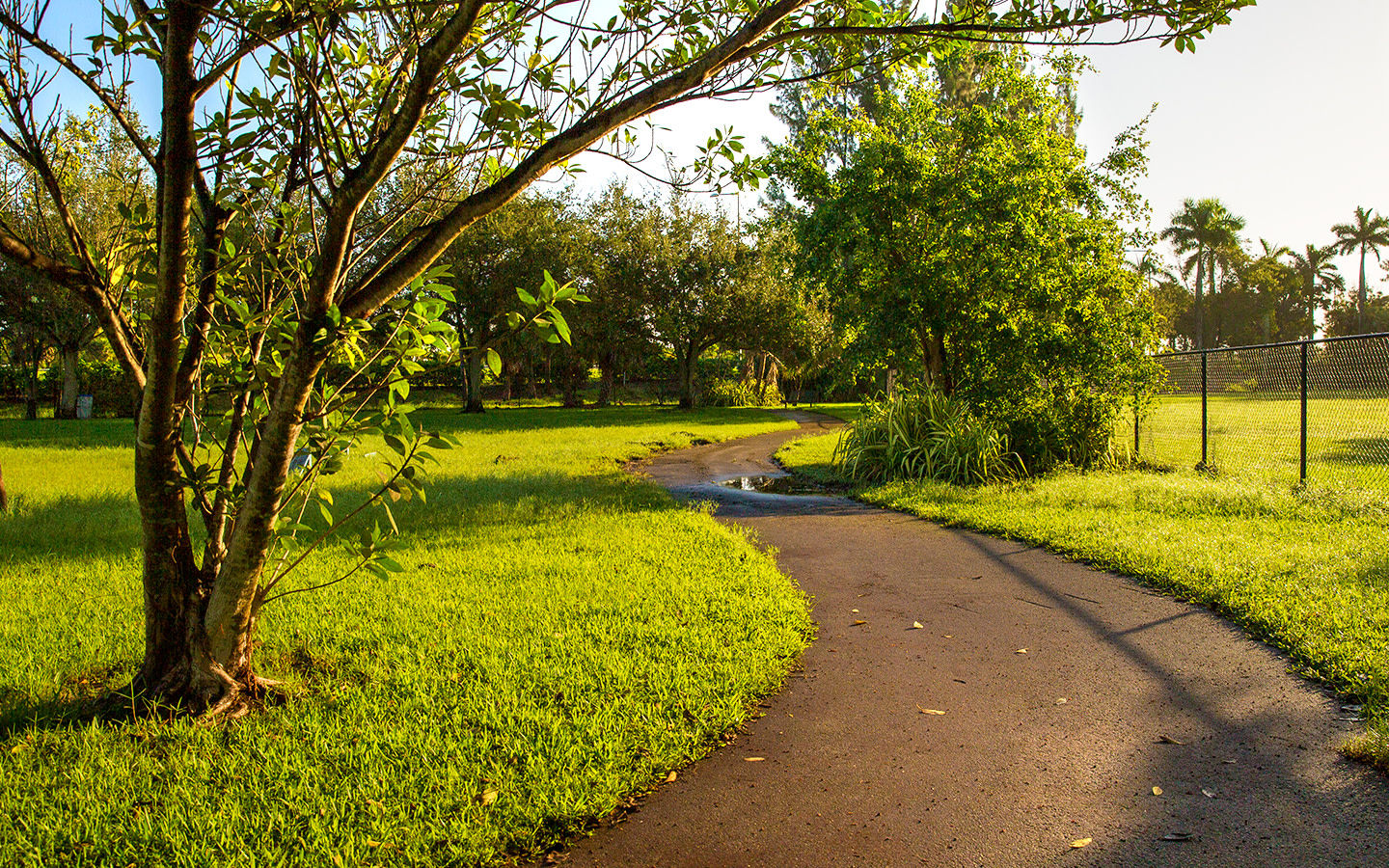 Scenic paths at Amelia Earhart Park