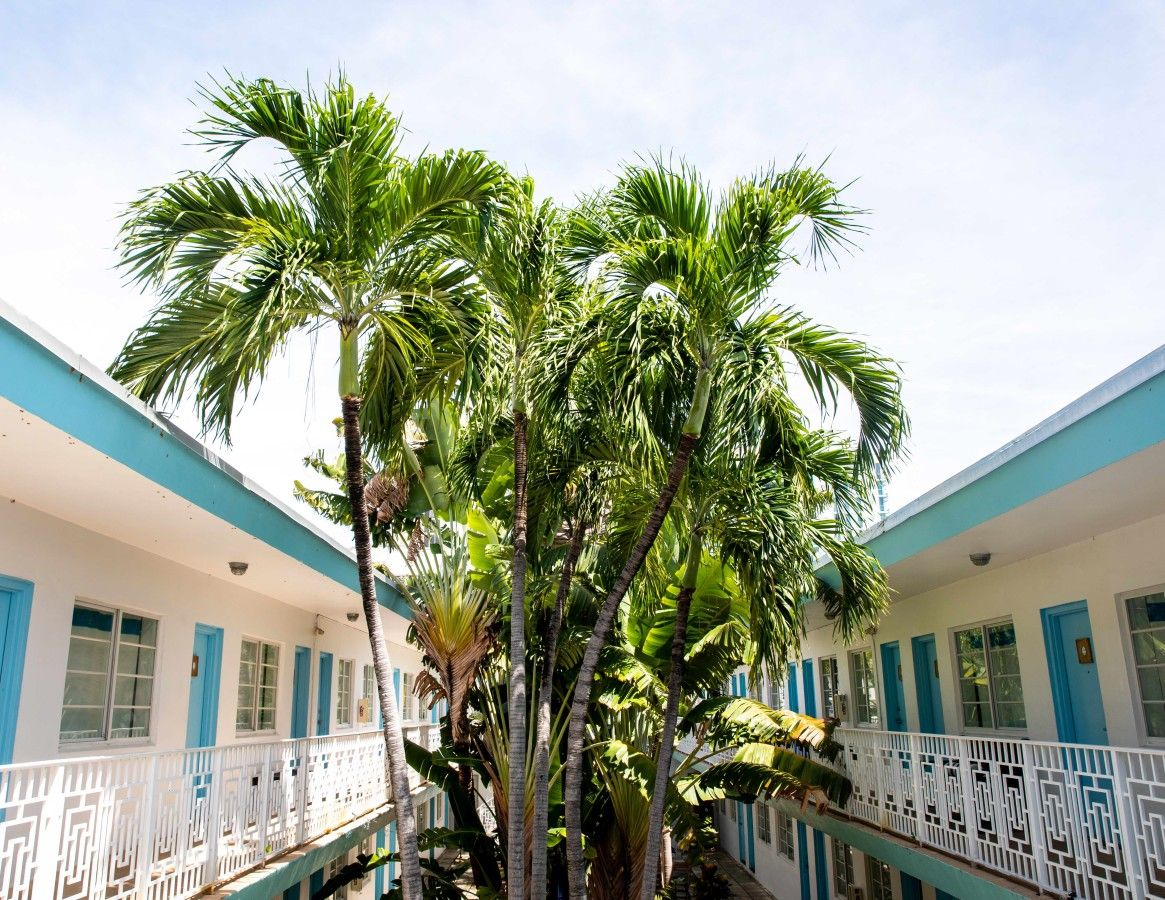 Aqua Courtyard