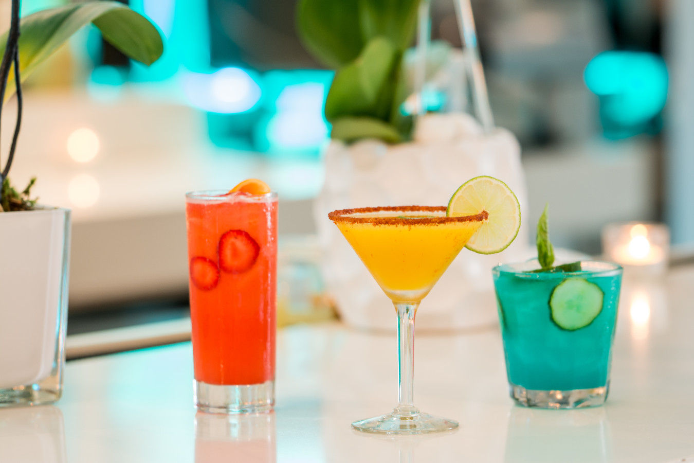 Cocktails at Canvas