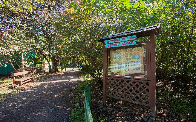Hummingbird & Butterfly Garden