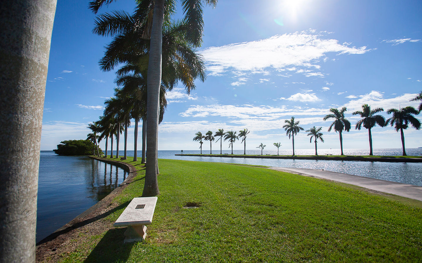 Palm Trees and water views from Charles Deering Estate