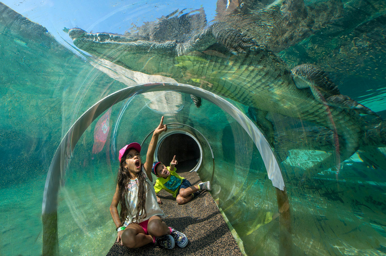 Croc tunnel