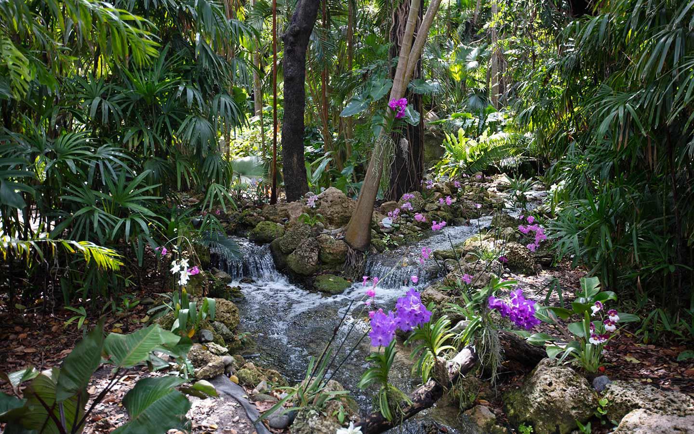 Fairchild Tropical Garden Waterfall