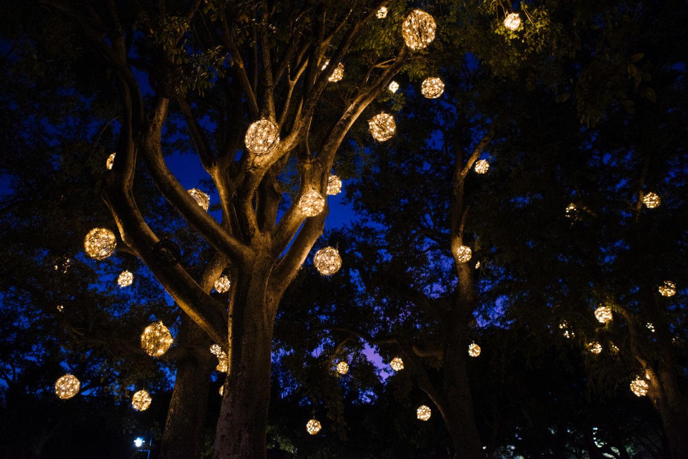 Grove Glow Lighting Installation