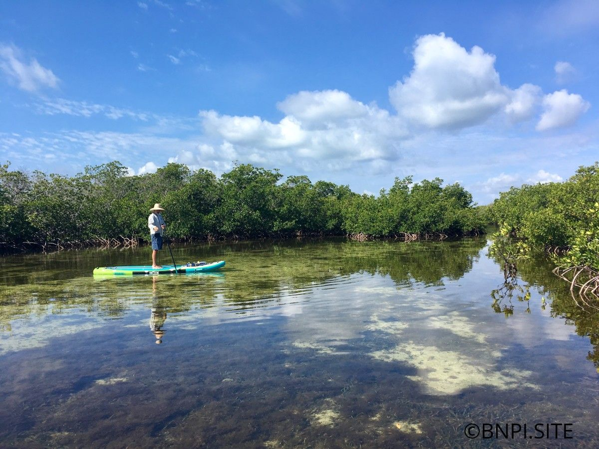Paddling in Jones Lagoon