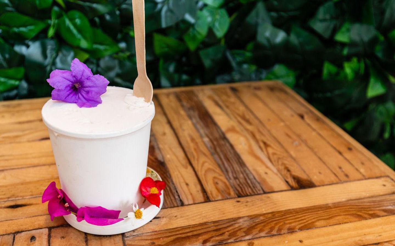 Lulu's Liquid Nitrogen Ice Cream
