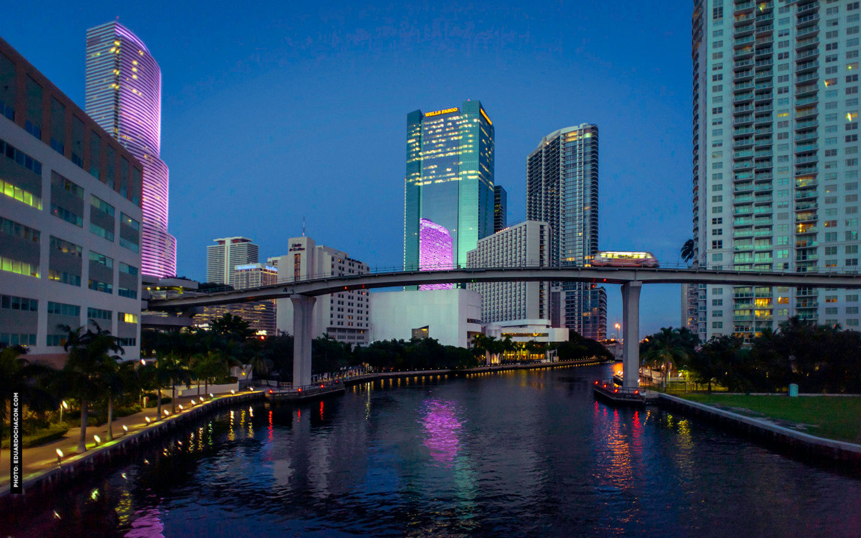 Get Your .Miami Domain Name