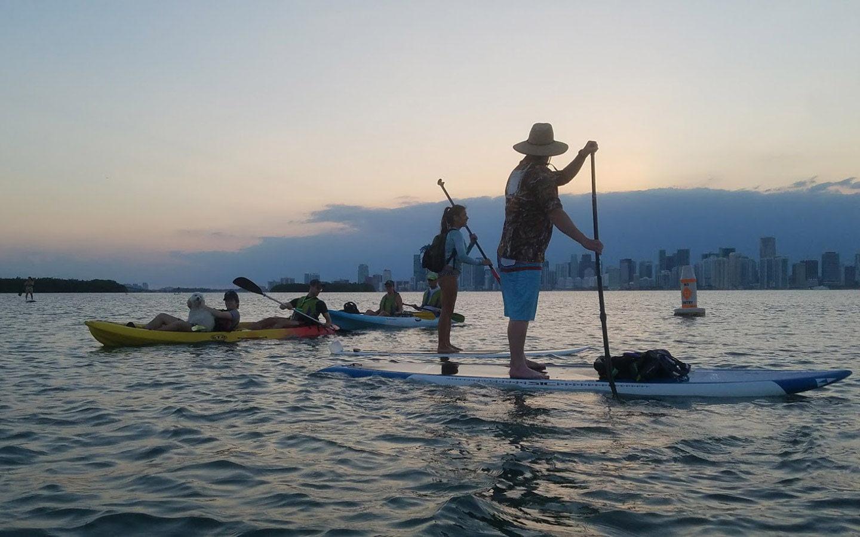 SUP and Kayaks with dog