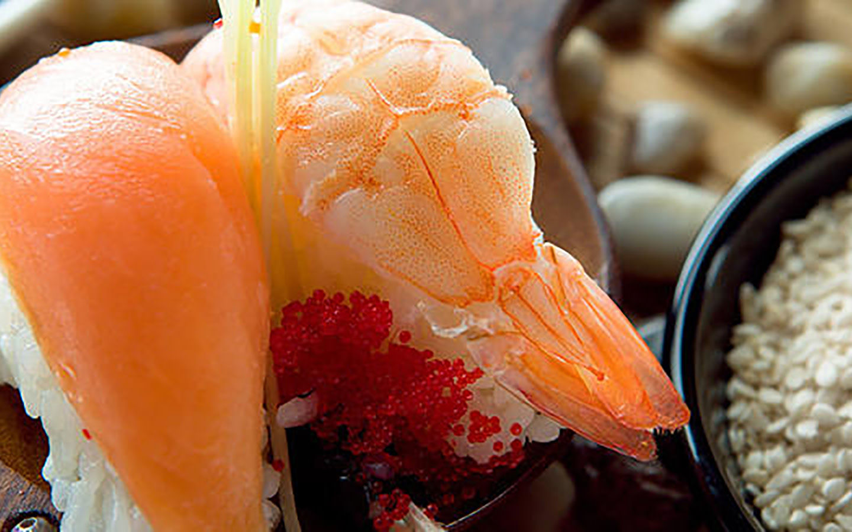 Yoko's Japanese & Sushi Bar