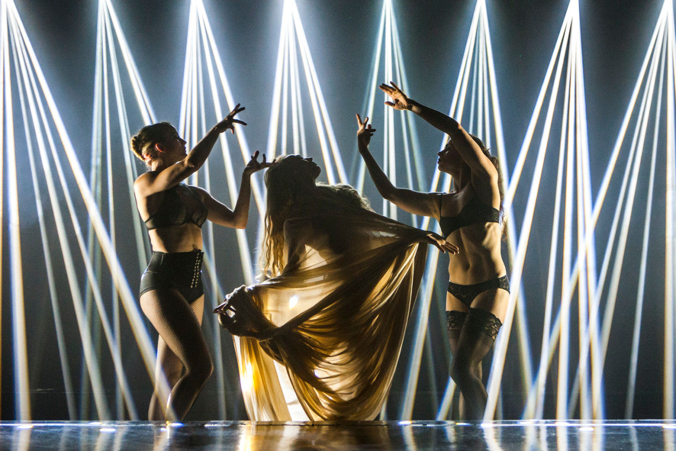 Sensatia at the Faena Theater