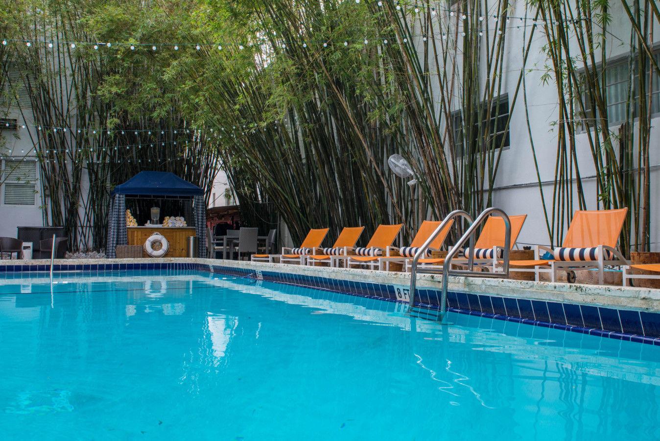 Bambus-Pool