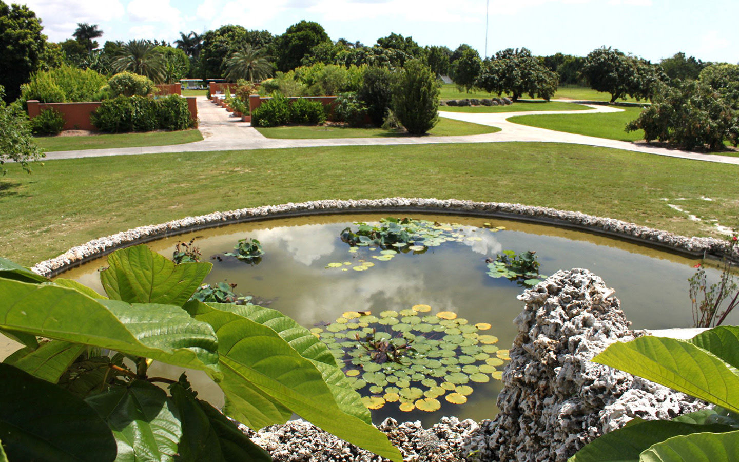 Fruit & Spice Park pond
