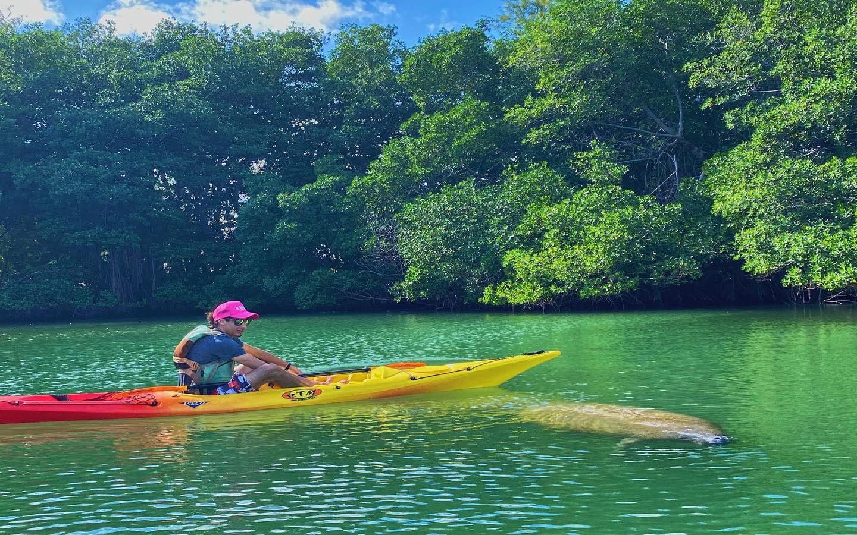 Kayak with Manatees