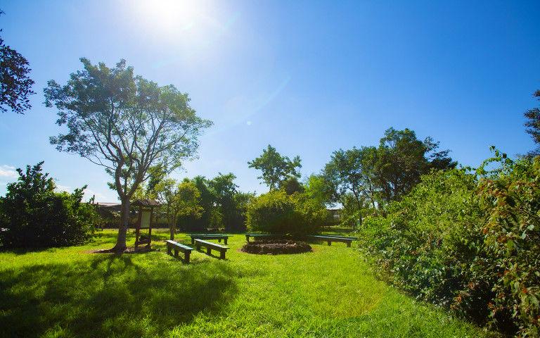 Castellow Hammock Park & Nature Center