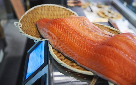 Fresh salmon at Dragonfly Izakaya & Fish Market