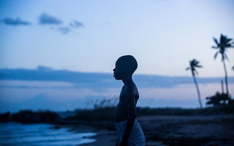 Filme vencedor do Oscar de Miami, Moonlight