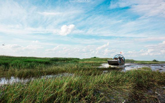 Coopertown Everglades Airboat Tour