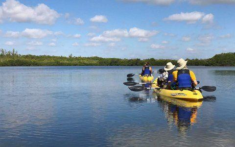 Caiaque e canoagem em Miami