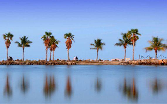 Matheson Hammock Park Atoll Beach