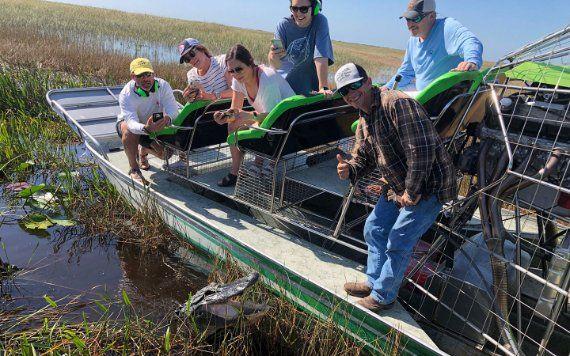 Everlgades Alligator Tour