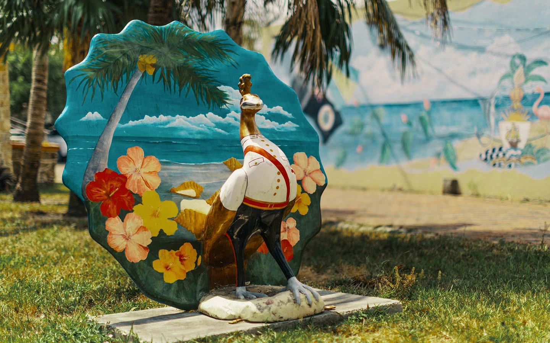 Nassau Daddy Peacock