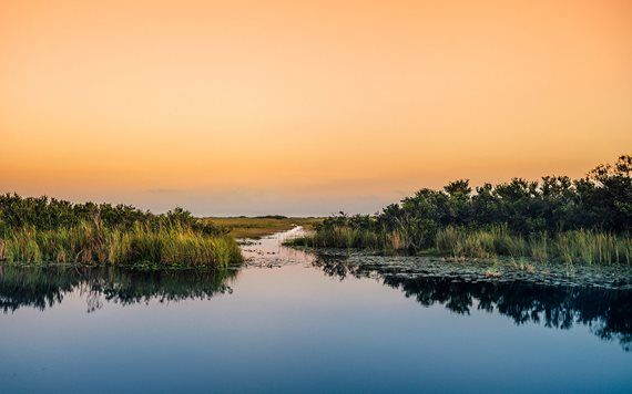 orange sunset in the Everglades National Park