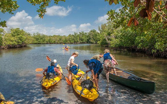 Kayaking in Oleta River State Park