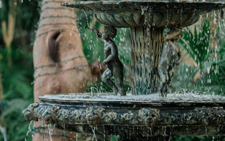 cauley fountain